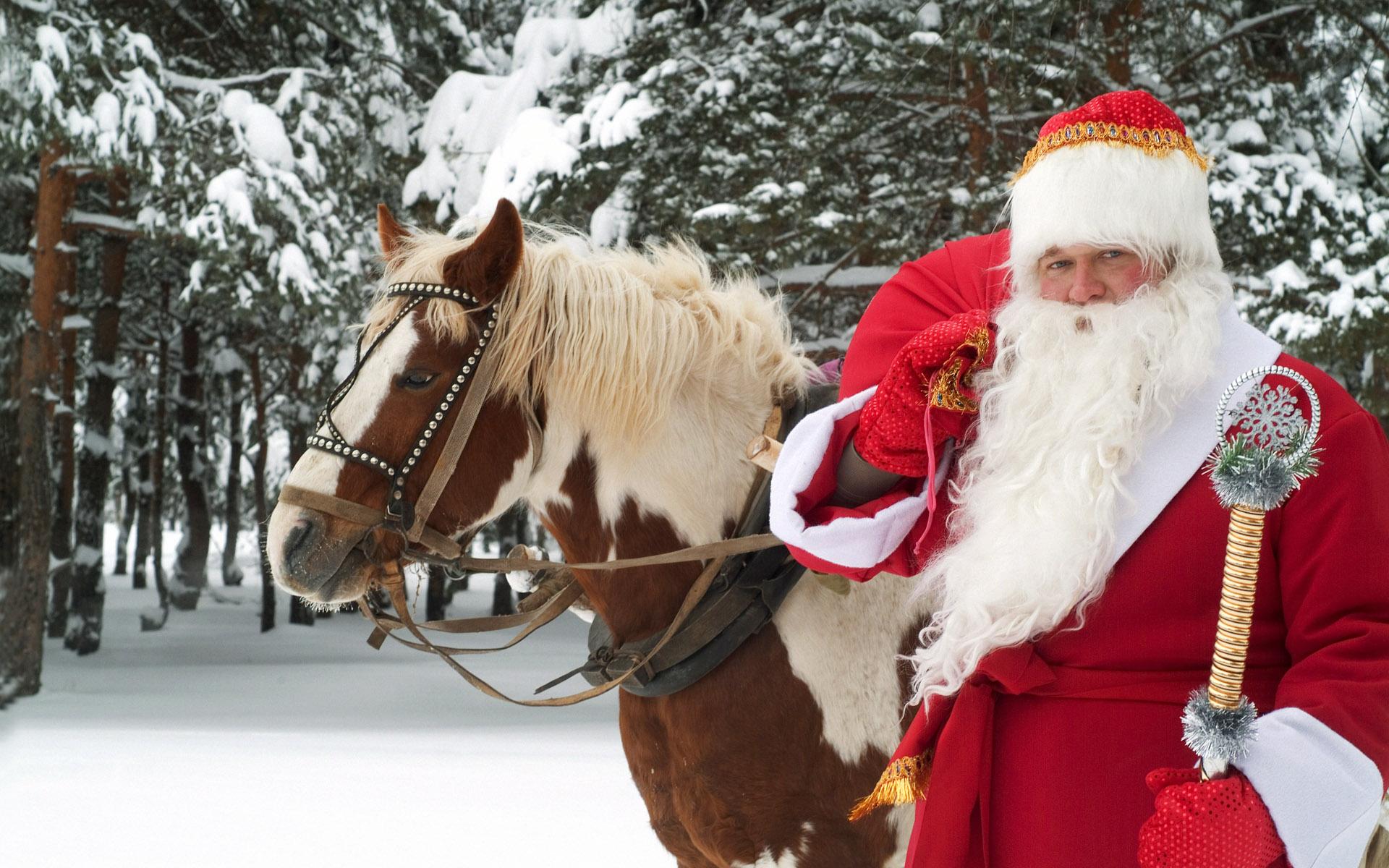 Mikołajowy koń