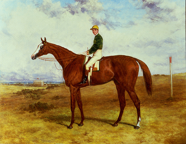Blair Athol, painting by Harry Hall. Blair Athol was a famous Thoroughbred stallion born in 1861. We analyzed modern Trakehner and Quarter Horses with the MITFprom1 mutation who share this stallion as a common ancestor. The extremely large blaze of Blair Athol suggests that this horse also carried the MITFprom1 allele. (Image courtesy of Rehs Galleries, Inc., NYC, www.rehs.com)(JPG)
