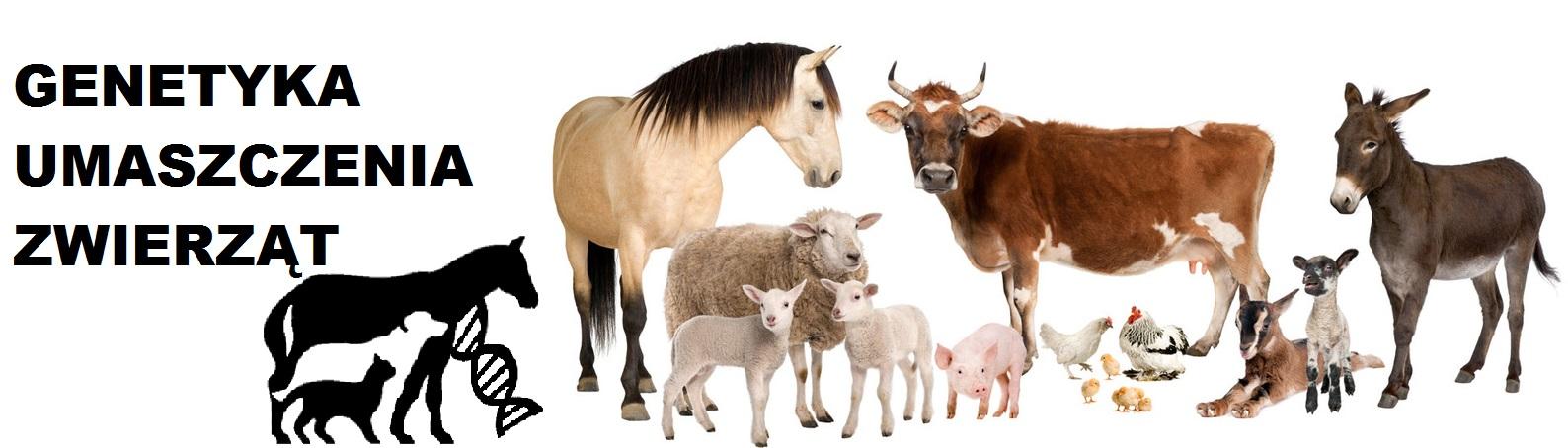 Genetyka Umaszczenia Zwierząt